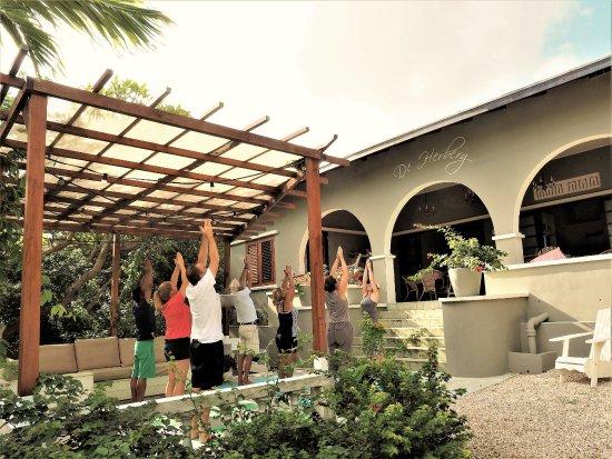 B&B Curacao De Herberg: Yogales op De Herberg #YogaFlee
