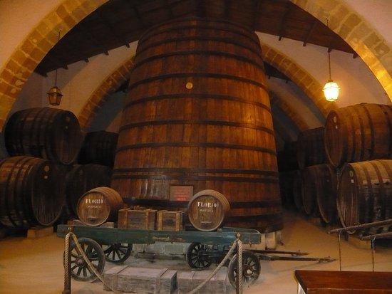 Florio: In the wine cellar