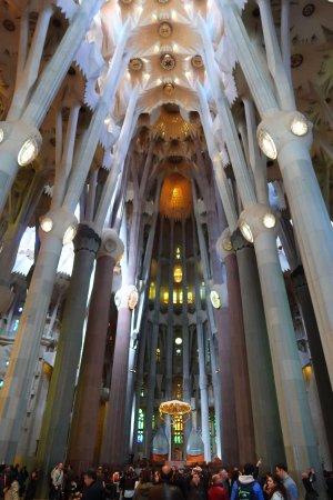 Interno Della Sagrada Familia Barcellona Picture Of