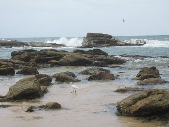 Tangalle, Sri Lanka: A little bit rocky part