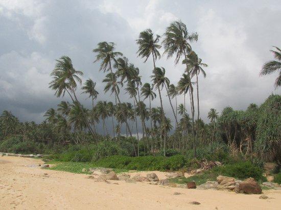 Tangalle, Sri Lanka: 5 minutes long rain