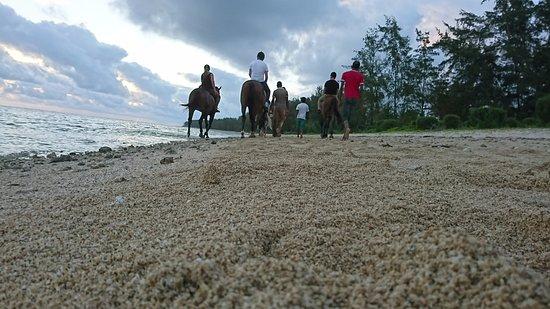 Riambel: Sunset Beach Ride