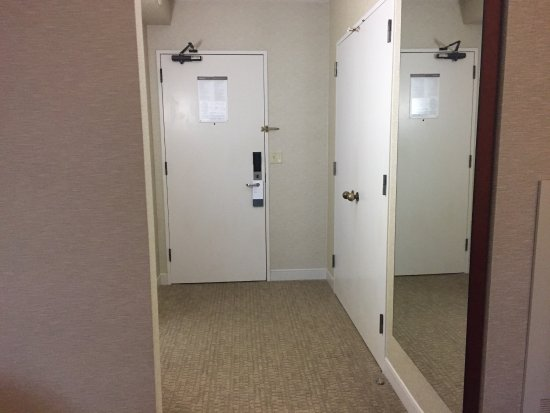 Westin Galleria Houston Hotel: photo1.jpg