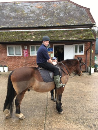 Arniss Equestrian Fordingbridge 2018 All You Need To