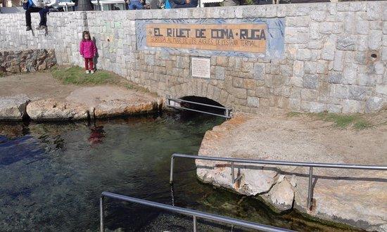 L 39 estany i el riuet coma ruga spanien omd men for Mampara fija se sale el agua