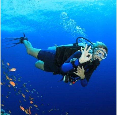 Divesicily taormina snorkeling scuba diving padi course open water diver giardini naxos fishing