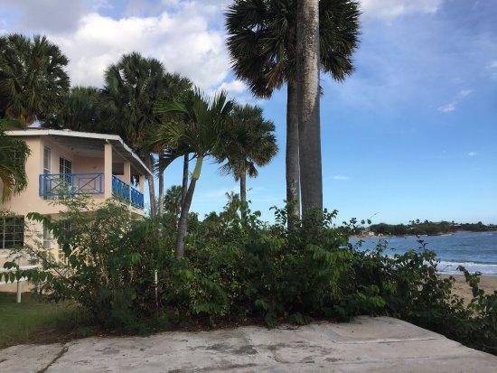 Treasure Beach Hotel: photo6.jpg