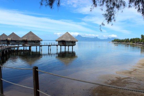 Le Meridien Tahiti : Beach and view