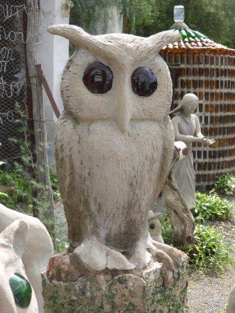 The Owl House: Owl Garden