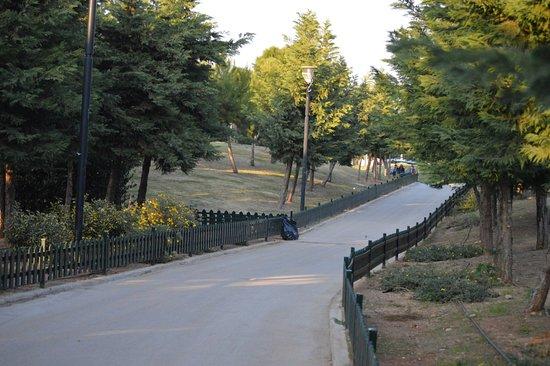 Flisvos Marina: Στο πάρκο