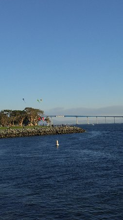 San Diego Pier Cafe: Kite flying on a gorgeous day.