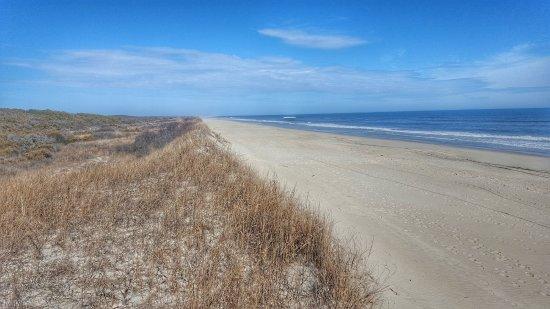 Chincoteague National Wildlife Refuge Beach At Nwr