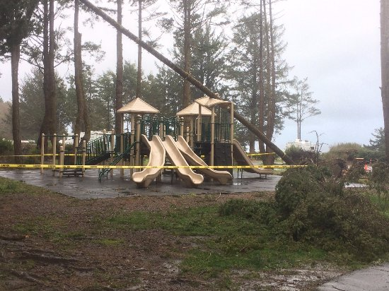 Harris Beach State Park: kids playground (damaged by fallen tree in storm that night)