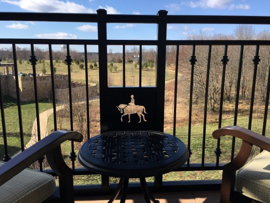 Amazing equestrian style hotel an hour from DC