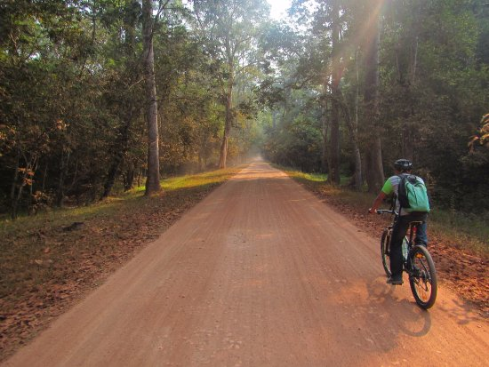 Khmer for Khmer Organisation: Pleasant quiet roads in between the popular temples