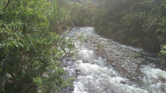 Mindo Garden: Río a la entrada del lugar