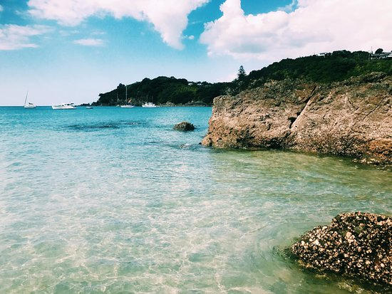 Waiheke Island, New Zealand: beach