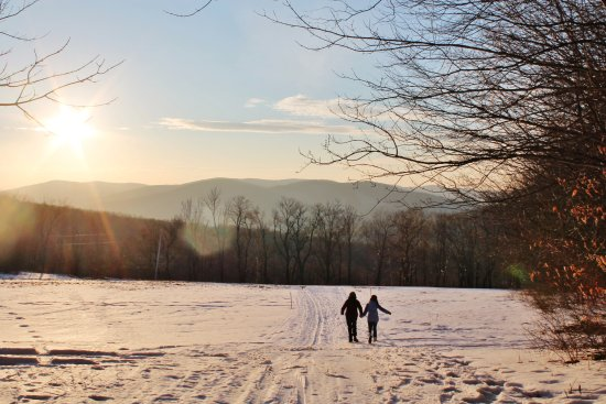 Huntington, VT: Skiing and hiking trails pass through the property - we walked for hours!