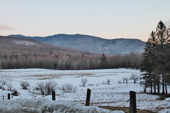 Huntington, VT: View of Windekind's meadow from the top of the drive.