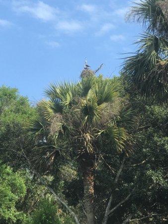 Jupiter, FL: Riverbend Park