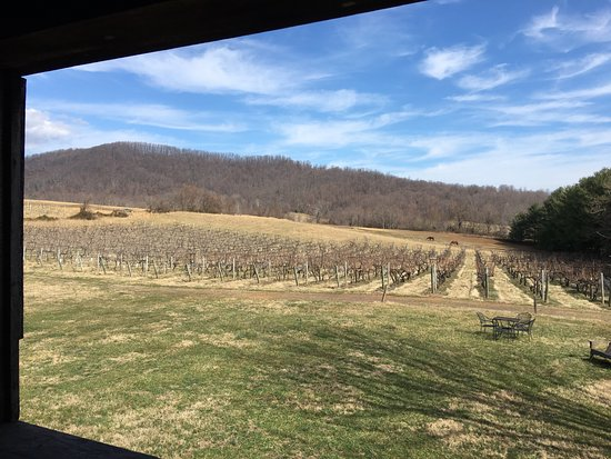 Sperryville, VA: Such a lovely setting, and Jim was super friendly. The wine was also lovely. Highly recommend.