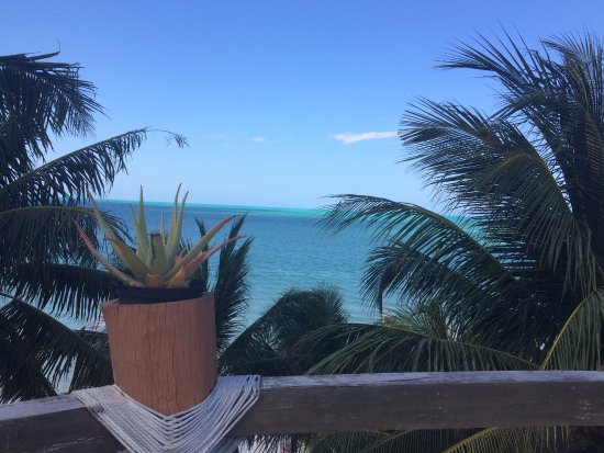 Beachfront Hotel La Palapa: View from the terrace on top of hotel