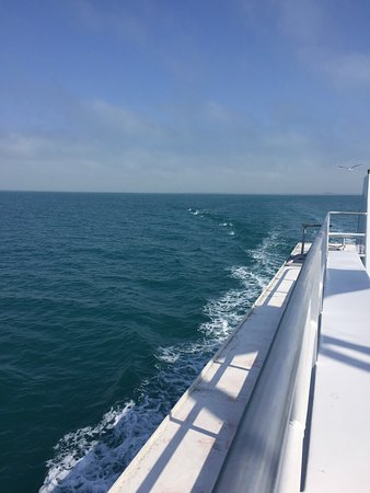 Bild fr n queen fleet deep sea fishing for Queen fleet deep sea fishing clearwater fl