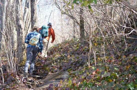 Rosman, Carolina del Norte: Hiking in Nantahala National Forest