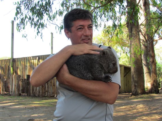 Launceston, Australia: Get up-close-and-personal with the wildlife at Trowunna Wildlife Park! I