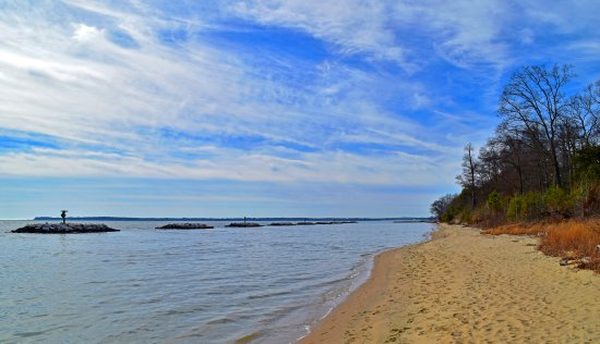 Edgewater, MD: Photo of the Beach on the Chesapeake Bay