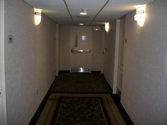 Jacksonville, NC: soft carpet