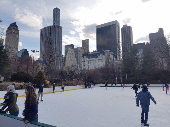 Trump Rink in Central Park: Foto de parte da pista.