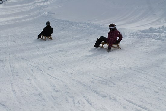 Petite-Riviere-Saint-Francois, Canada: two luge participants on their sled