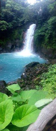 Национальный парк Вулкан Тенорио, Коста-Рика: photo0.jpg