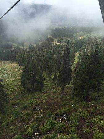 ワシントン山 Image