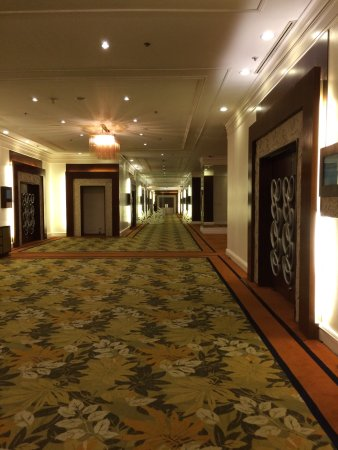 Edsa Shangri-La: spacious and satisfying shangri-la...