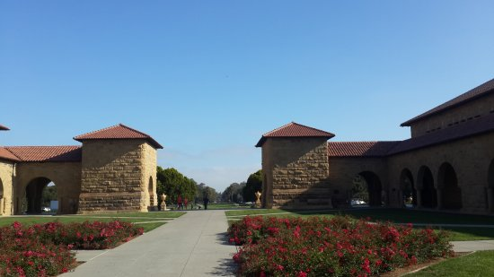 Palo Alto, CA: The beauty of stanford