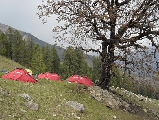 Chamoli District, Indien: Camping in Kuari pass.