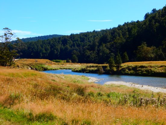 Waikaia, Neuseeland: Lovely bush walks and access to the river