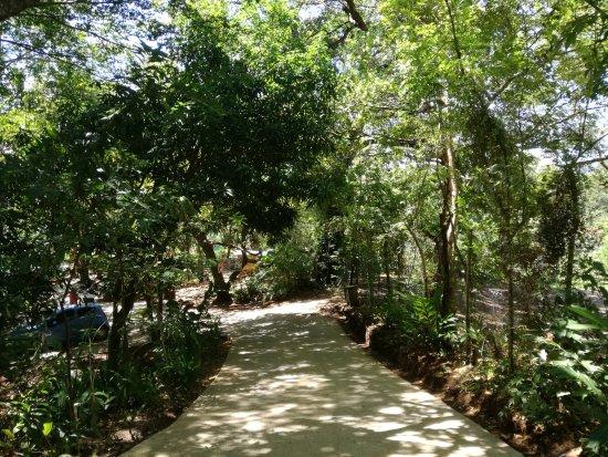 Butterfly Gardens: Inside the garden.