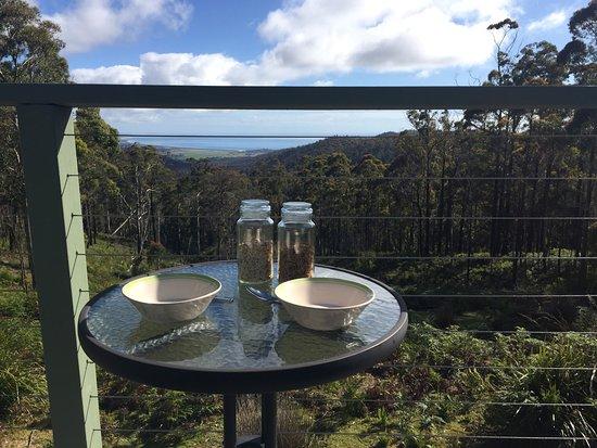 St Marys, Австралия: photo3.jpg