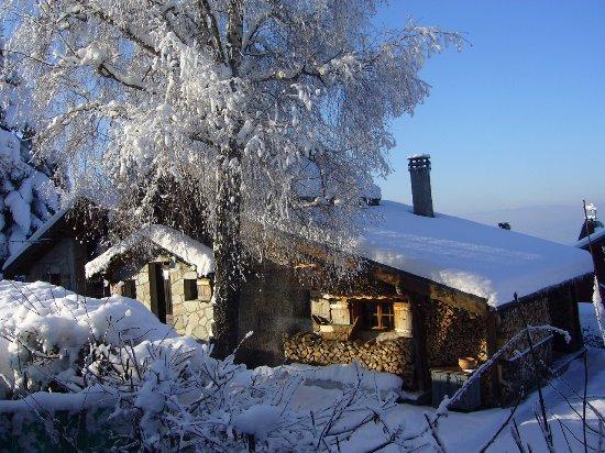 Thollon-les-Mémises, France : hiver
