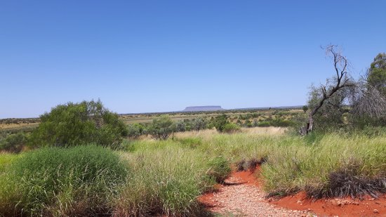 Northern Territory, Australien: Mount Conner