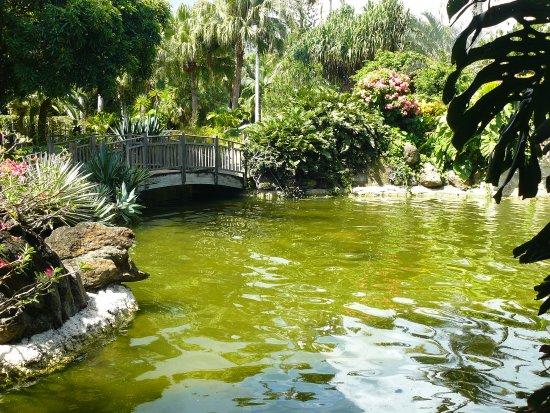 Deshaies, Guadeloupe: petit pont