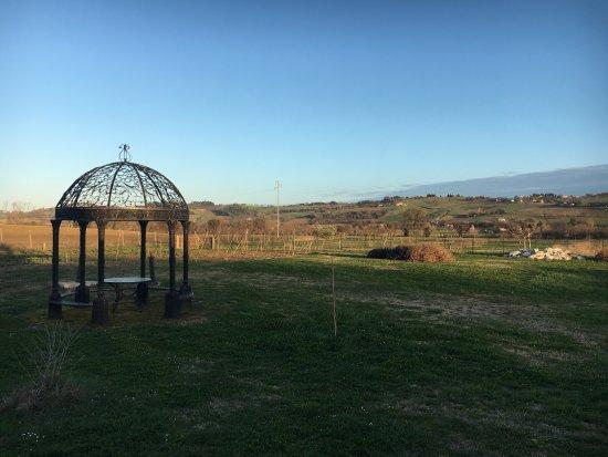 Monte Porzio, Italien: Agriturismo Regina di Fiori