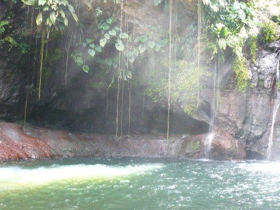 Petit-Bourg, Guadalupe: rafraichissant