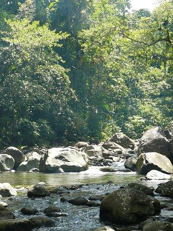 Petit-Bourg, Guadalupe: changement de paysage