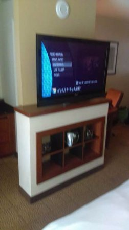 Hyatt Place Ft. Lauderdale Airport & Cruise Port: Nice size TV