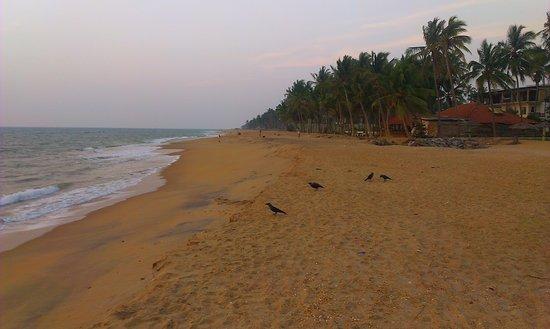 Sri Lanka Marawila Amagi Beach Hotel