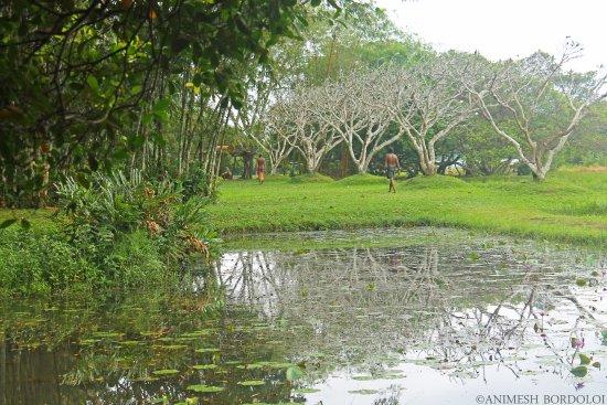 Bentota, Sri Lanka: A pond as a part of the landscape